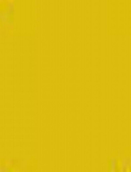 Plakatkarton, 10er Pack, 380 g/m², 48 x 68 cm, gold