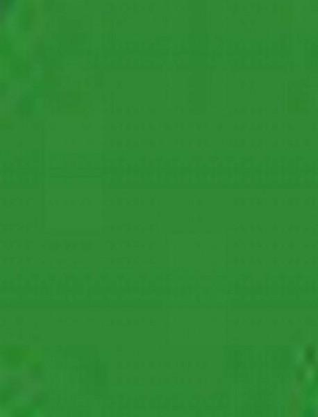 Plakatkarton, 10er Pack, 380 g/m², 48 x 68 cm, apfelgrün