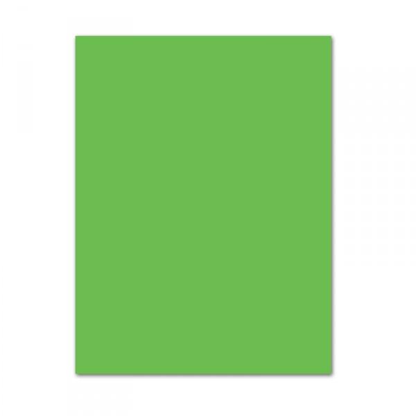 Blumenseide, 26 Bogen, 50 x 70 cm, hellgrün