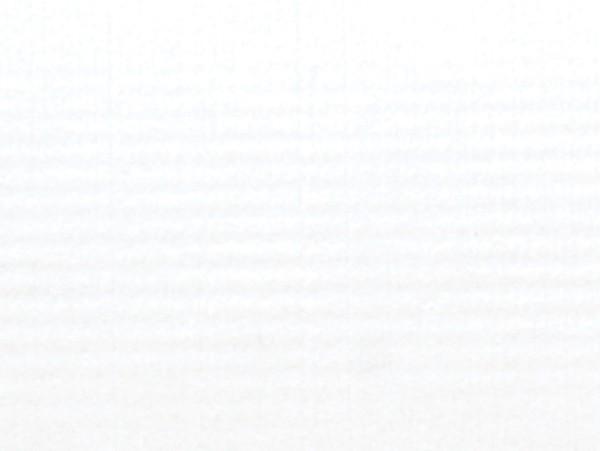 Verzierwachsplatten Perl, 200x100x0,5mm, 10 Stück, weiß
