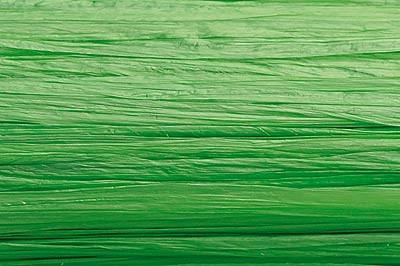 Edelbast Viscose, 30 m, glänzend lindgrün