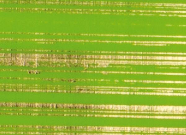 Verzierwachsplatten, gold gestreift, 10 St., gelbgrün