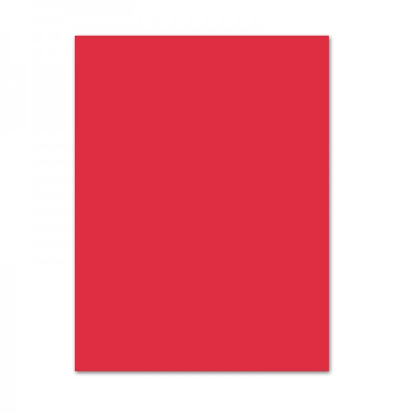 Fotokarton, 10er Pack, 300 g/m², 50x70 cm, hibiscus