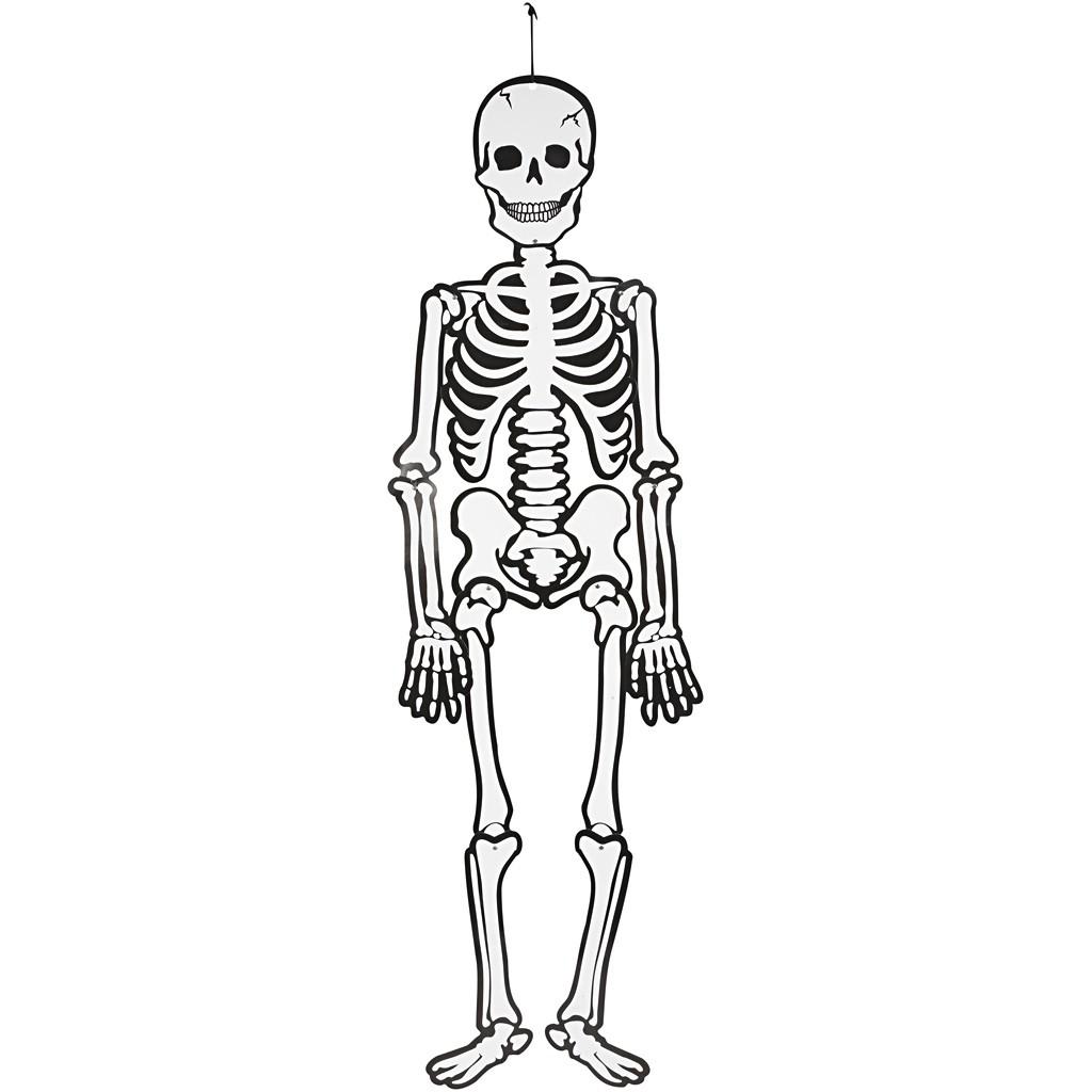 skelett leuchtet im dunkeln höhe 120 cm  kreativdepot