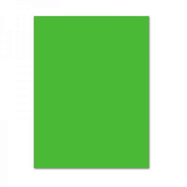 Tonpapier, 100er Pack, 130 g/m², DIN A4, grasgrün