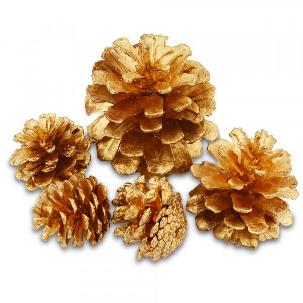 Zapfen, 3-4 cm, 6 Stück, gold