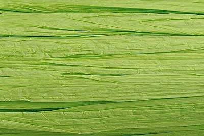 Edelbast Viscose, 30 m, matt lindgrün