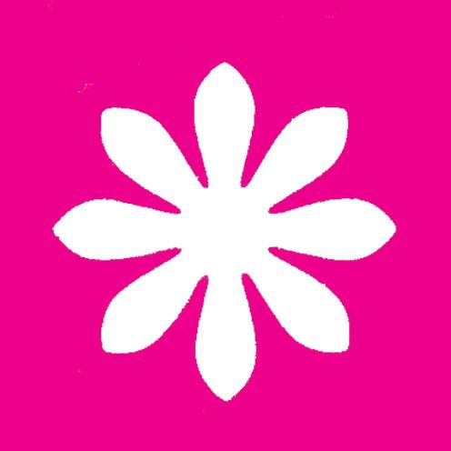 Stanzer Gänseblümchen, 76 mm