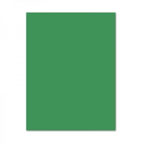 Tonpapier, 10er Pack, 130 g/m², 50x70 cm, moosgrün