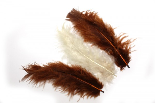 Marabufedern, ca. 10 cm, 20 St, Braun-Mix