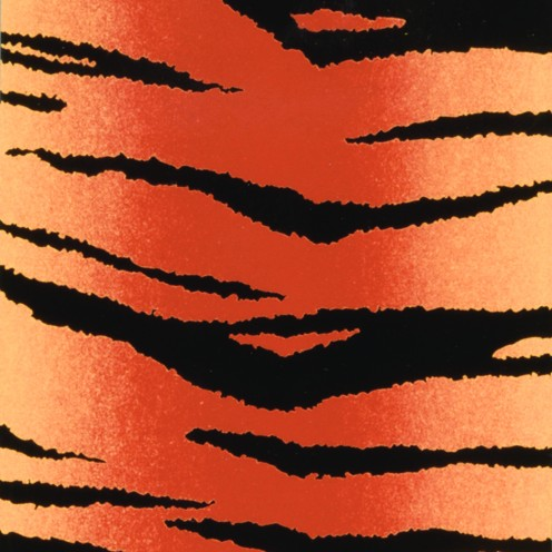 Color-Dekor Dekofolie, 10x20cm,2 Stück, Tiger