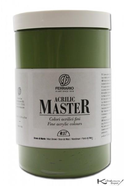 Ferrario Acrilic Master Acrylfarbe, 1000 ml, Grüne Erde