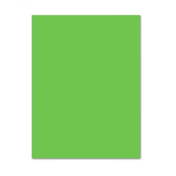 Tonpapier, 10er Pack, 130 g/m², 50x70 cm, hellgrün