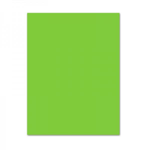 Fotokarton, 10er Pack, 300 g/m², 50x70 cm, maigrün
