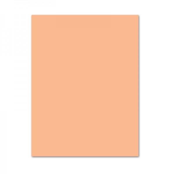 Tonpapier, 10er Pack, 130 g/m², 50x70 cm, apricose