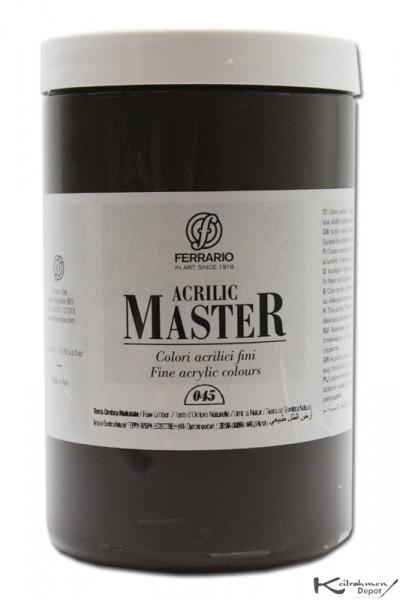Ferrario Acrilic Master Acrylfarbe, 1000 ml, Umbra natur