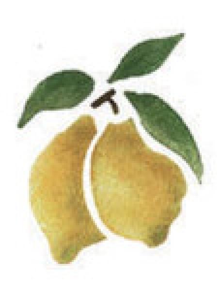 Motiv-Schablonen Zitronen 7x10 cm