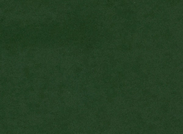 Wachsplatten, 200 x 100 x 0,5 mm, 2 Stück, laubgrün